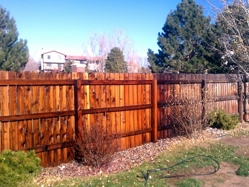 Fence Pressure Washing in Colorado Springs
